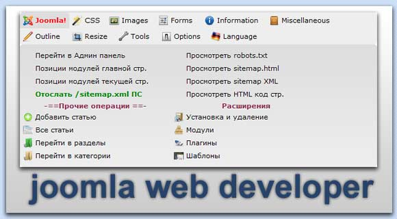 Web Developer Joomla